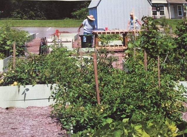 Community Garden - Presbyterian Church of Easton